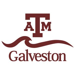 Texas A&M University at Galveston logo.
