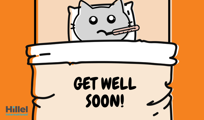 """Get well soon!"" with image of cat in a bed"
