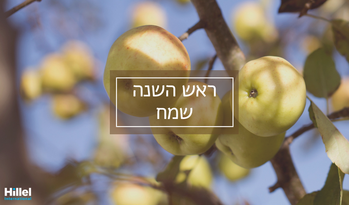 """Rosh Hashanah Sameach"" in Hebrew on top of image of green apples growing on a tree"