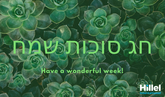"Hag Sukkot Sameach written in Hebrew along with the text ""Have a wonderful week"" with a background of leaves."
