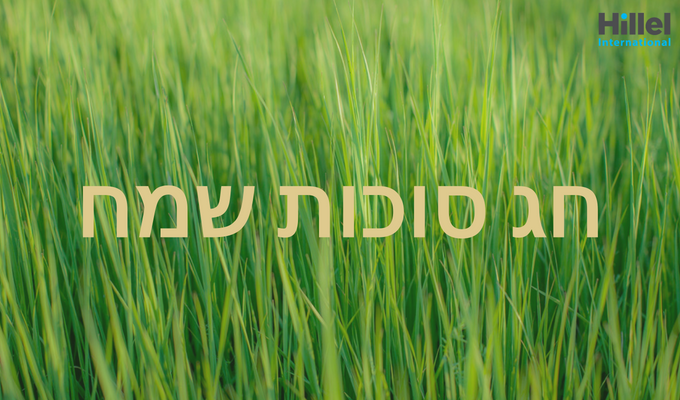 Hag Sukkot Sameach written in Hebrew in beige text in front of an image of grass.